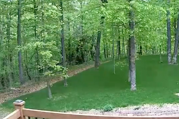 How to Make an Airsoft Field in Your Backyard