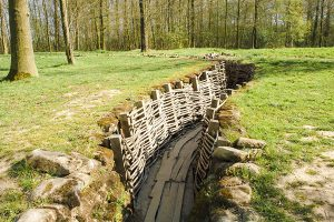 Trenches in yard