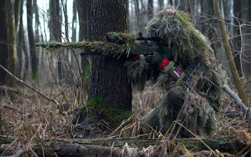 Can an Airsoft Sniper Rifle Kill A Bird FI